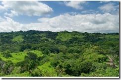 L990 Costa esterillos lots and homes (7)