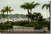 REMAX Jaco Costa Rica Real Estate landscape (12)