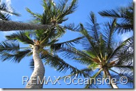 REMAX Jaco Costa Rica Real Estate landscape 1
