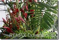 REMAX Jaco Costa Rica Real Estate landscape (31)