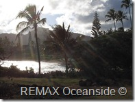 REMAX Jaco Costa Rica Real Estate landscape (3)