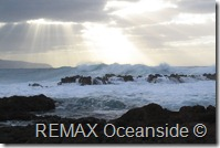 REMAX Jaco Costa Rica Real Estate landscape (5)