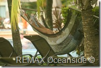 REMAX Jaco Costa Rica Real Estate landscape (6)