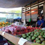 farmers market jaco beach costa rica (7)